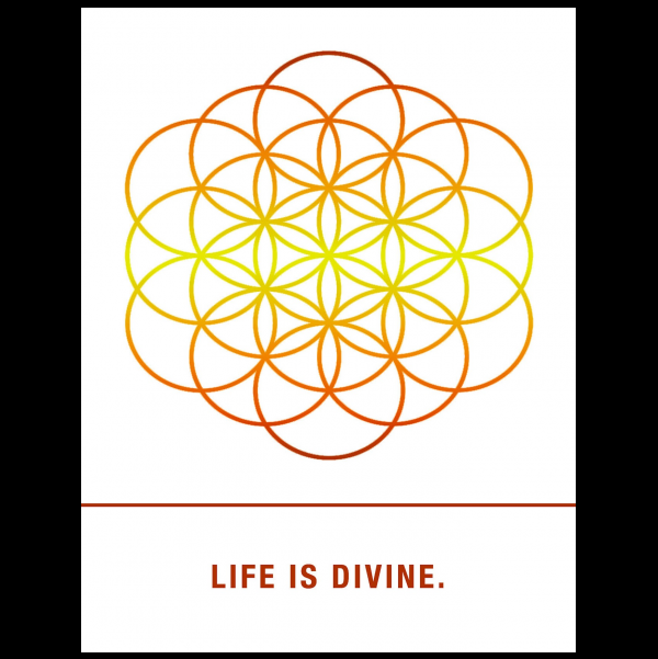 Life is Divine. greeting card from the Empowerments collection.