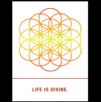 Life is Divine.